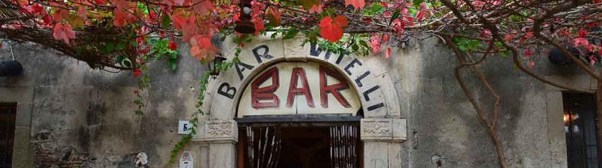 Bar Vitelli is in the Godfather 1 movie