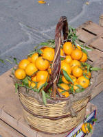 sicily is famous for its red oranges